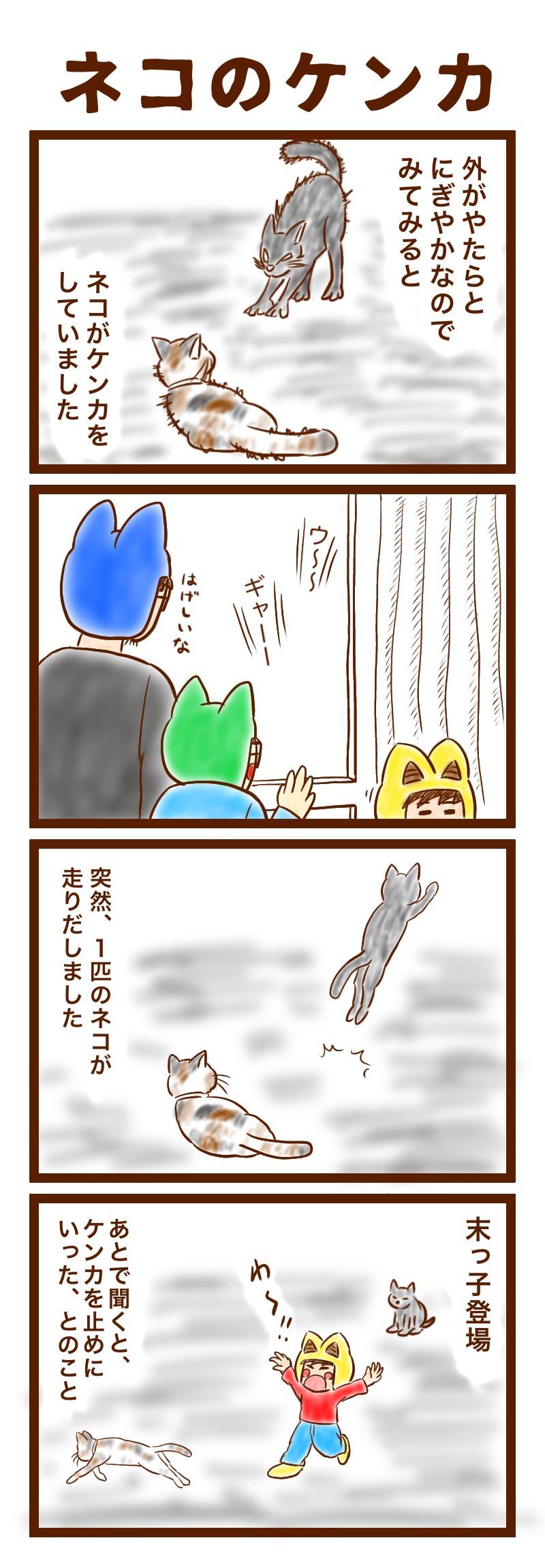 ネコのケンカ