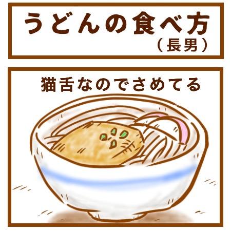 うどんの食べ方1